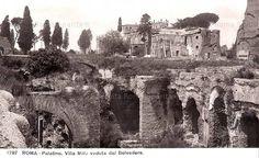 Palatino - Villa Mills Rome, Villa, Fork, Villas, Rome Italy