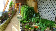 Radically Sustainable Buildings Earthship, Image Categories, Sustainable Architecture, Patio, Sustainability, Outdoor Structures, Green, Plants, Home