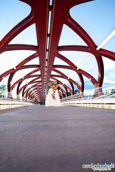 Calgary Wedding Photography by Carolyn Budreski Photography Inc. Wedding Stuff, Wedding Photos, Professional Photography, Nova Scotia, Calgary, Real Weddings, Photo Ideas, Fair Grounds, Wedding Photography
