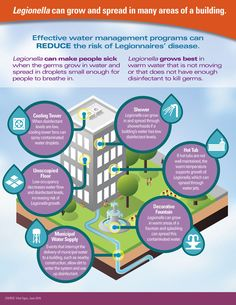 Graphic: Legionella can grow and spread in many parts of a building