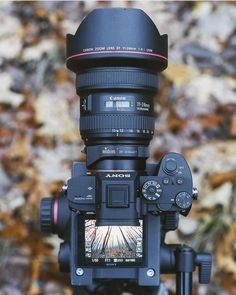 Sony Metabones Adapter, & Canon 👌👌 By Camera Life, Sony Camera, Camera Gear, Digital Camera, Canon Cameras, Canon Dslr, Best Dslr, Best Camera, Camera Equipment