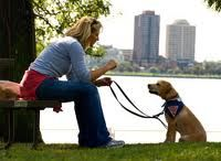 "Volunteer!  Raise a Leader Dog puppy!  ""During a puppy outing in Downtown Detroit, Puppy Raiser Carrie Krausmann and Future Leader Dog ""Lola"" share a connection that extends beyond the leash."" (http://www.leaderdog.org/volunteer/puppyraiser/index.php)"