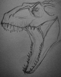cute animals to draw drawing drawing Cool Art Drawings, Pencil Art Drawings, Art Drawings Sketches, Drawing Drawing, Drawing Ideas, Dinosaur Drawing, Dinosaur Art, Animal Sketches, Animal Drawings