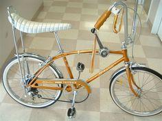 1966 Schwinn Fastback in ►Schwinn Fastback Bicycle Museum Forum
