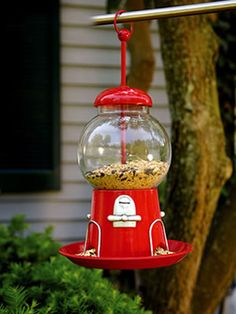 Gumball Machine Bird Feeder