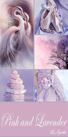 PINK AND LAVENDER ~~