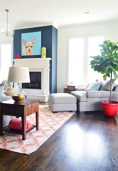 Fiddle leaf fig Young House Love | The Heart of The (Show) Home | http://www.younghouselove.com