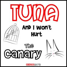 Tuna   #cats #gatos #gatetes #catslovers #catlover #love #amor #meow #miau #tuna #atun #food