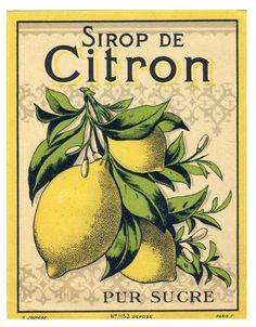 syrup vintage Label Sticker label etiquettre retro ancienne