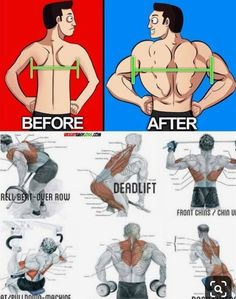 fitness training at home ~ fitness training _ fitness training workouts _ fitness training women _ fitness training for beginners _ fitness training plan _ fitness training videos _ fitness training weightlifting _ fitness training at home Fitness Workouts, Training Fitness, Weight Training Workouts, Fitness Gym, Health Fitness, Training Videos, Fitness Weightloss, Gym Workout Chart, Gym Workout Videos
