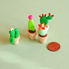 Cuctus and miniature pots | Afsaneh Tajvidi | Flickr