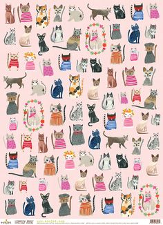 Carolyn Gavin illustration. WRAP :: Cool Cats ecoWrap - Ecojot - eco savvy paper products