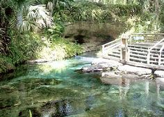 Rock Springs, Apopka, FL - Also a place we LOVE to go - look for the i.see.kissimmee blog post when we visit again!