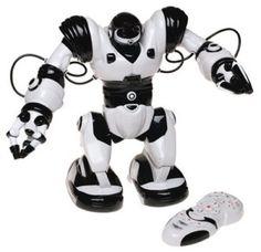 Robosapien as a sex toy