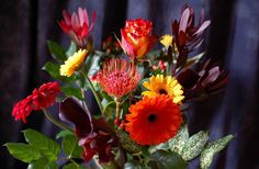 flower wallpaper: Full HD Pictures by Kavon Waite (2017-03-21)