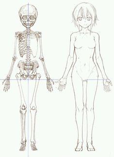 """Résultat de recherche d'images pour """"anime medidas de dibujo"""""""