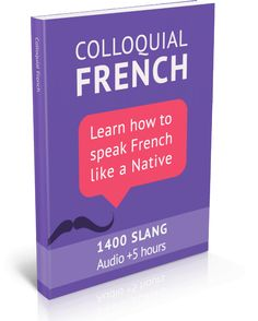 french slang ebook