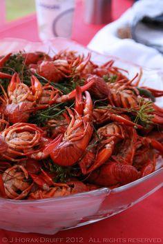 A Swedish crayfish party near Malmö –