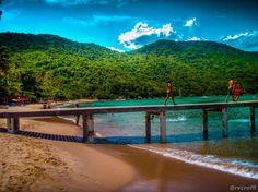 A view of a beautiful beach in Ilha Grande