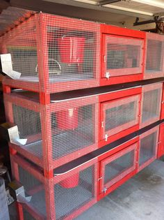 "Image 80 of 243 in forum thread ""Show me you quail pens! Backyard Chicken Coops, Backyard Farming, Chickens Backyard, Quail Pen, Quail Coop, Rabbit Farm, Rabbit Cages, Rabbit Pen, Raising Quail"