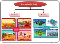 B for Biology: Crop Production and Management (Part II)