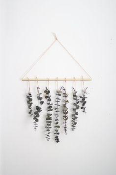 Eucalyptus Wall Hanging Kit