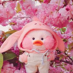 Little Duck, Cute Stuffed Animals, Baby Ducks, Kawaii Wallpaper, Cute Backgrounds, Pink Stars, Cute Icons, Plush Dolls, Cute Cartoon