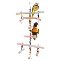 Bird Swing Cage Toy with Bells Homemade Bird Toys, Cockatiel Cage, Pet Bird Cage, Parrot Toys, Budgies, Parrots, Interactive Toys, Parakeet, Cat Toys