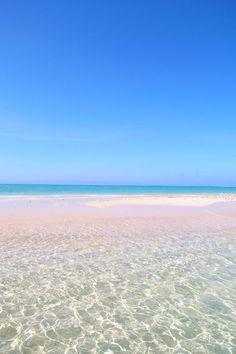 今日の絶景は、『石垣島』です♪ 石垣島って、何を連想します? 海、沖縄、石垣牛、ダイビング、、、 全てが一級品なんですよ♪ 今日はその一部でもお伝えできればうれしいです。 沖縄の島々って名前は聞くけど、よくわからな..