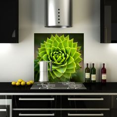 Green Cactus Flower: an example of a #printed #splashback available on the #CreoGlass e-shop now. We sell stunning resolution images which we print directly onto the glass, and we range from many categories, including: #floral, #animals, #landscape, #food