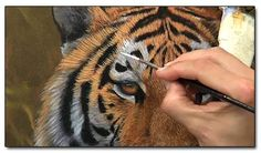 How-to-Paint-a-Tiger