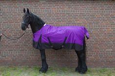 Afbeeldingsresultaat voor paarden dekens