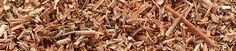 envergent-biomass-conversion