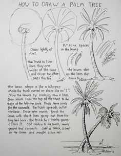 How to Draw a Palm Tree Worksheet goes with the drawing lesson. You can see it at my blog http://drawinglessonsfortheyoungartist.blogspot.com/2012/06/how-to-draw-palm-tree-lesson-worksheet.html
