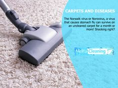 Carpets and Diseases - The Norwalk virus or Norovirus, a virus that causes stomach flu can survive on an uncleaned carpet for a month or more! Shocking right? Stomach Flu, Cleaning Service, Carpets, Work Hard, Survival, Farmhouse Rugs, Rugs, Working Hard