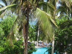 Zanzibar piscina