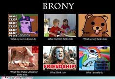 My little pony funny memes best of what people think i do what i