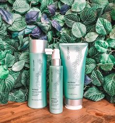A revolutionary blend that takes thin fragile hair to a whole new level . Say hello to shiny more voluminous ha. Stop Hair Loss, Prevent Hair Loss, Nutriol Shampoo, Nu Skin Ageloc, Neck Wrinkles, Facial, Bald Hair, Hair System, Hair Growth Treatment