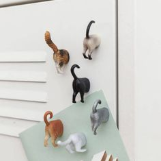 These cat butt magnets.