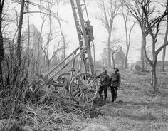 WWI, 13 March 1918; A fire-escape ladder leading up to an observation post in a tree at Cambrin. © IWM (Q 8560)