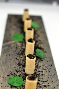 Wild mushroom, truffle mascarpone, wonton crisp, black olive powder