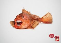 fish ads - Google 検索