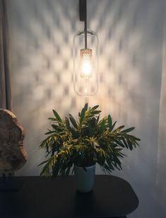 Tableau Plumen packaging ampoule design croisement économie d
