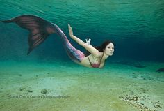 Mermaid in a beautiful purple Mertailor tail swimming in the ocean