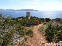 #Sardinia #Sardegna #Italy #travel #Europe #sea #spring #Sardínie #wine #beach #relax #nature #landscape #outdoor #season #travel #vacation #hiking #holidays #sightseeing #leisure #stock #photo #portfolio #tower Travel Europe, Italy Travel, Beach Relax, Hiking, Tower, Seasons, Wine, Vacation, Holidays