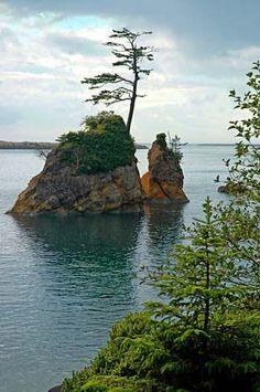 Tillamook Bay. (Photo No. tilD0008)