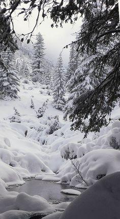 Winter Wonderland Bulgaria