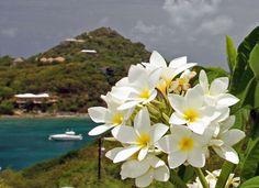 St. John, Virgin Islands...