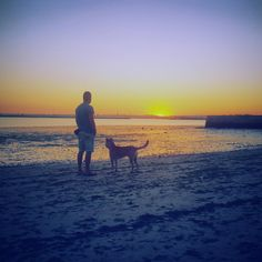 Magic pictures - Ricardo almeida: Por do Sol com o melhor amigo @ Dog Sunset
