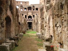 The underground tour, lower level of the Colosseum is outstanding.